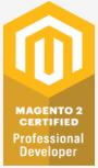 Magento 2 - Professional Developer